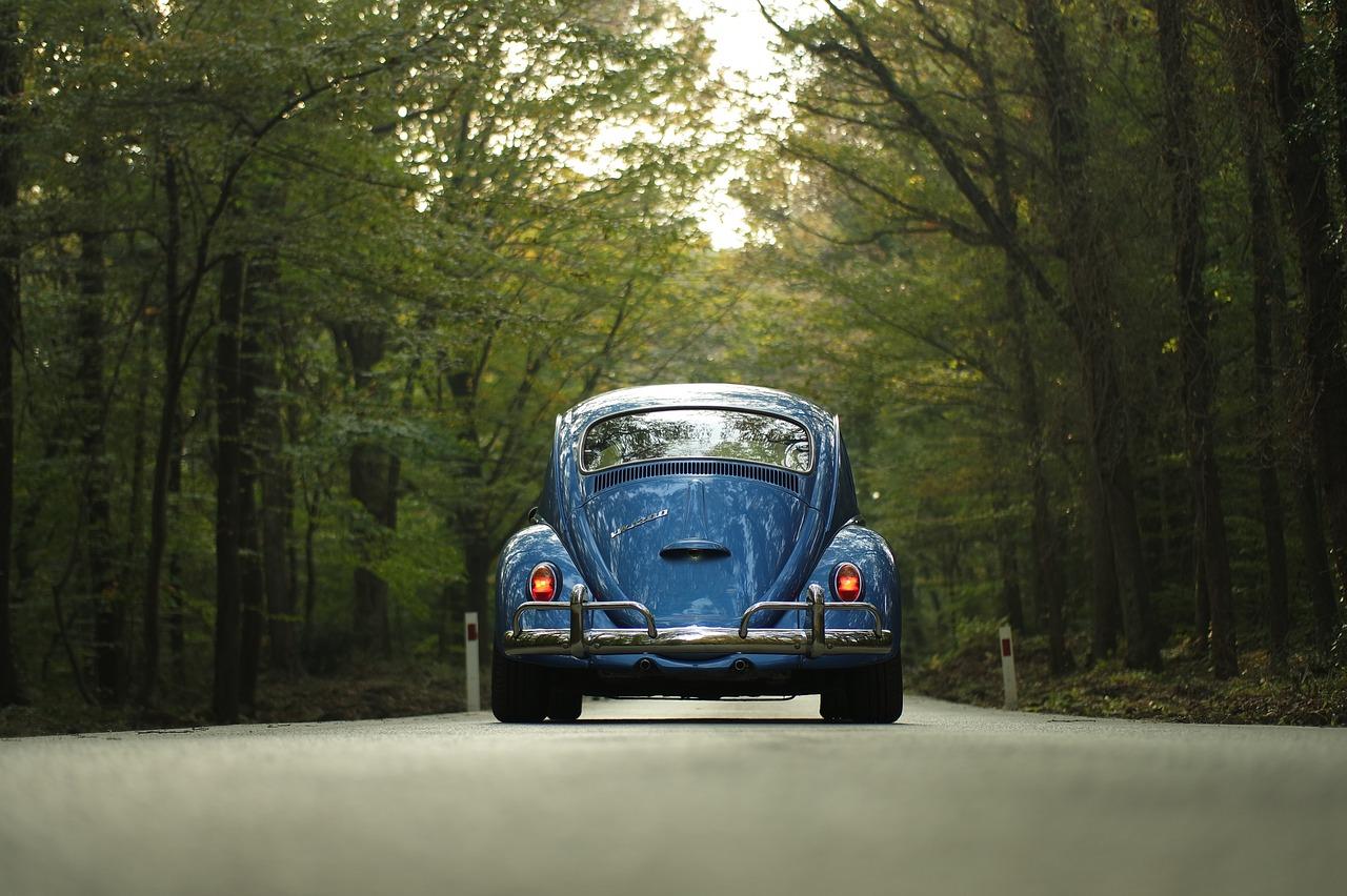 Wynajem samochodów: oferta dla firm i osób prywatnych